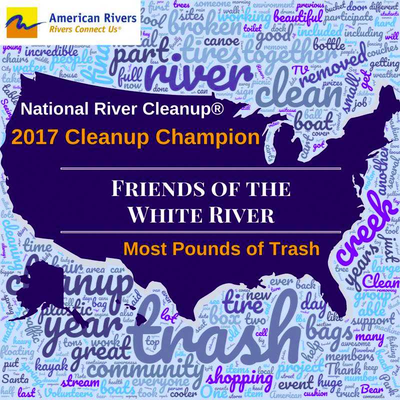 2017 Cleanup Champion